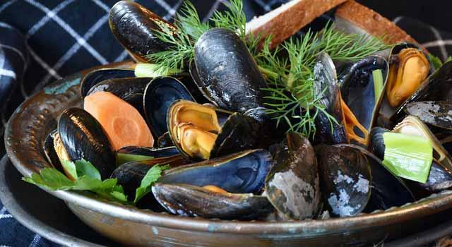 seafood-kerang