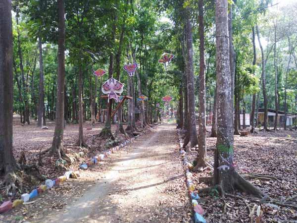 Suasana Jalan Utama Kotok Forest Park