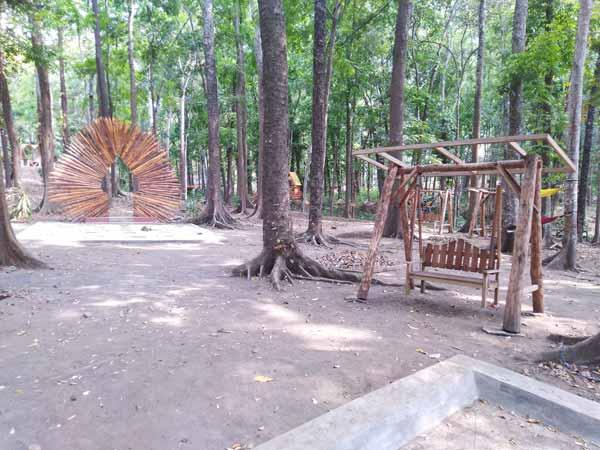 Atmosfer Saat Siang Hari di Kotok Forest Park